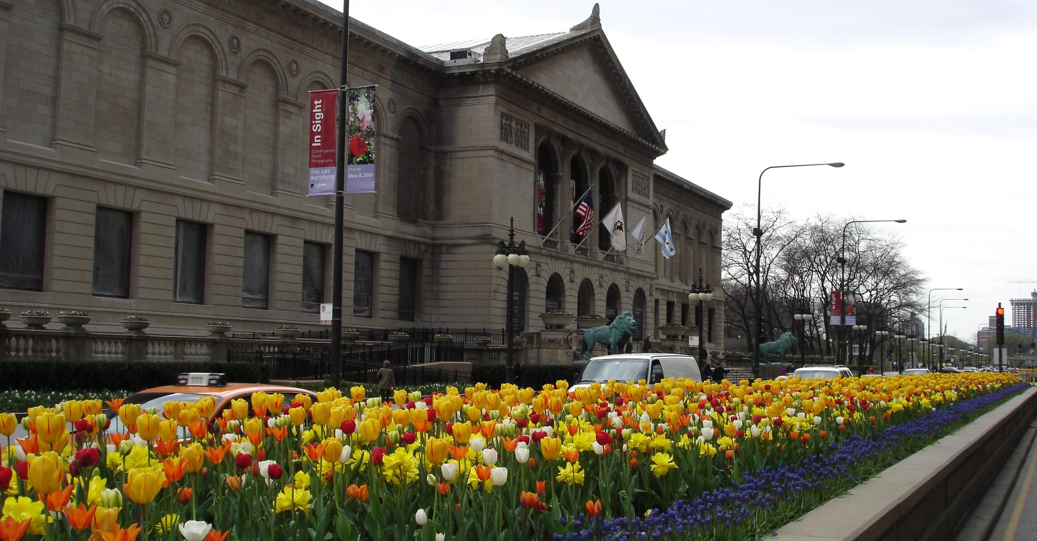 Michigan Avenue Medians at The Art Institute