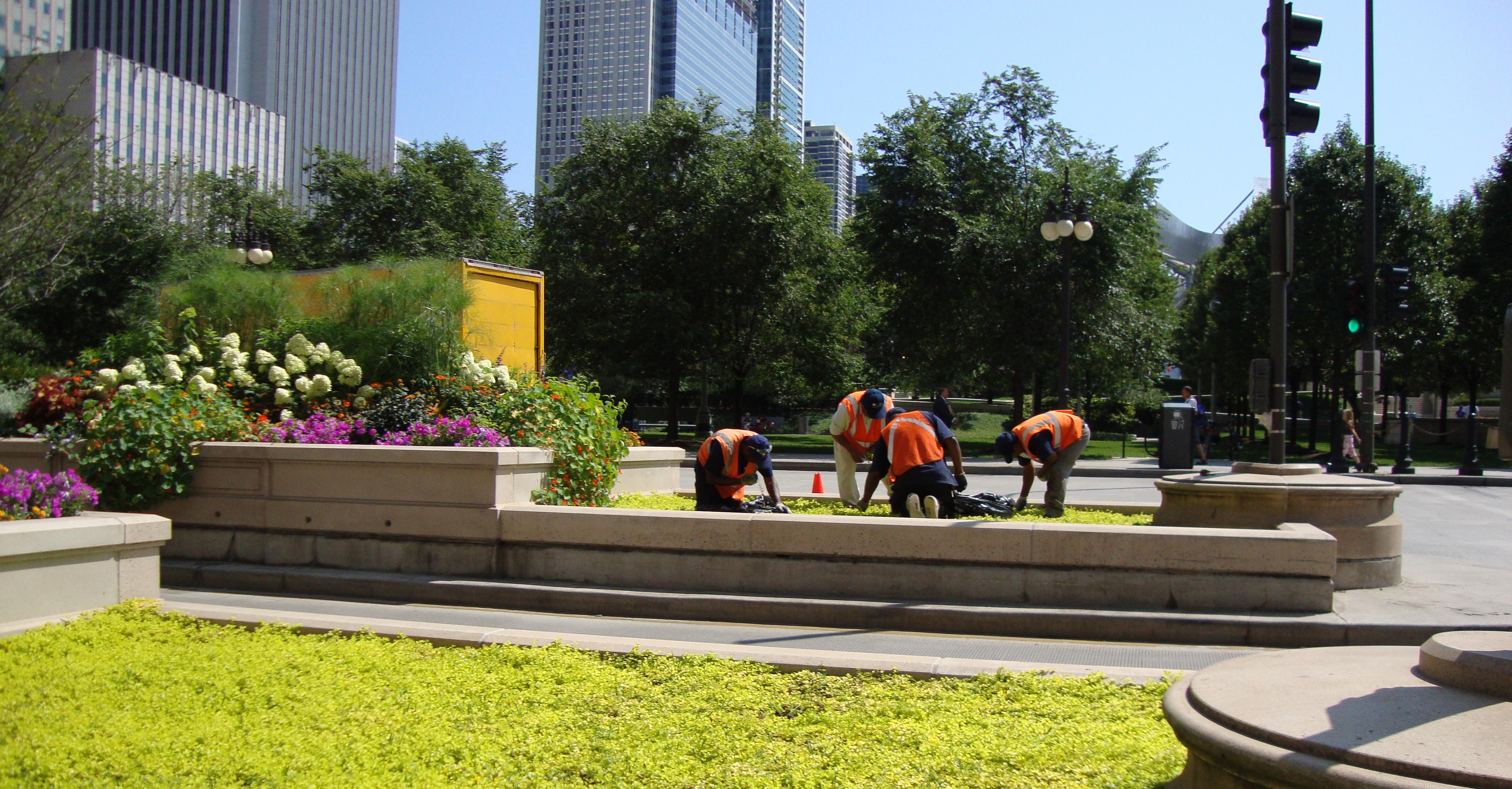Crew Working on Michigan Avenue at Millennium Park